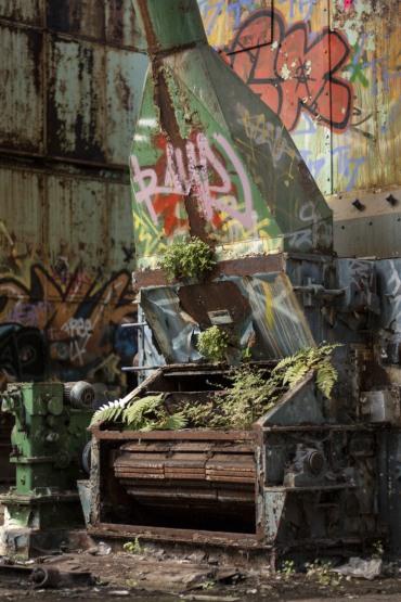 Fabrik - Natur findet einen Weg 3