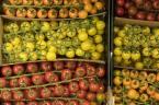 GroßmarkthalleMuc_Obst_Früchte CloseUp_47