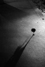 Living Streets-05