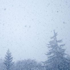 Winter - 4